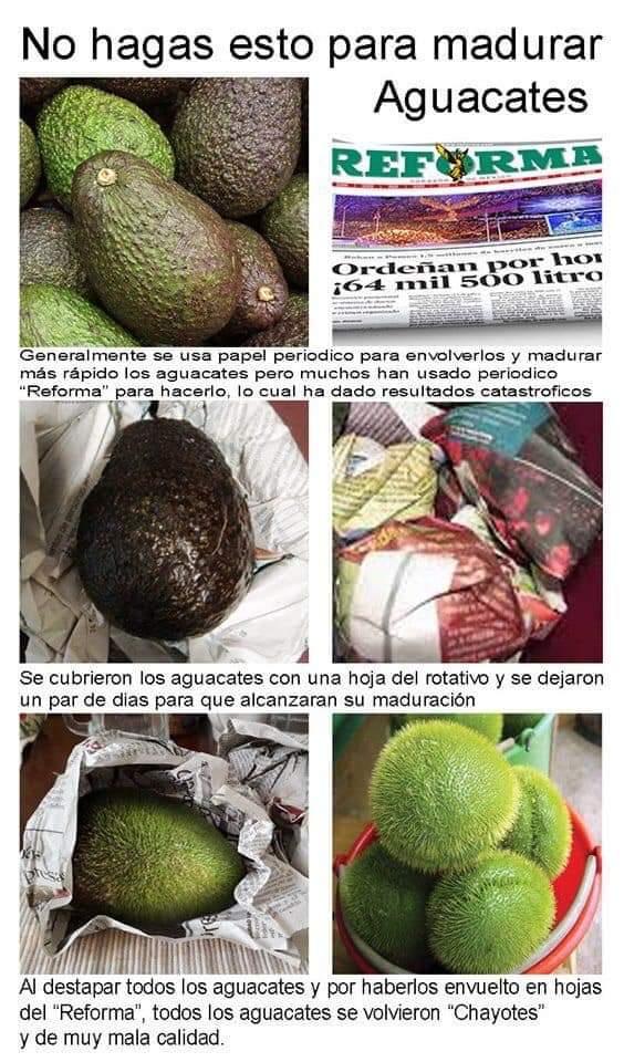 Marcianadas 379 100519001505 (346)