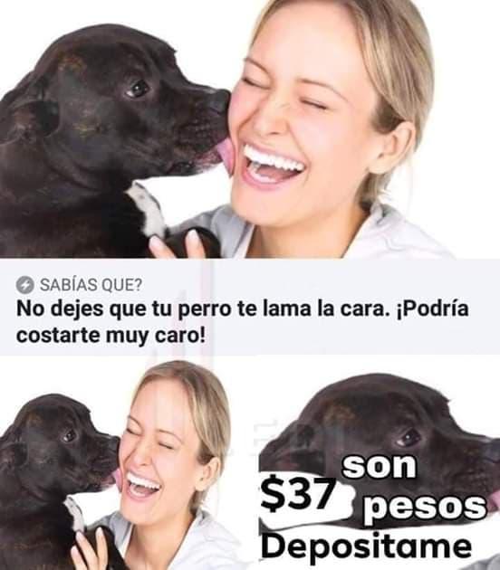 Marcianadas 379 100519001505 (89)