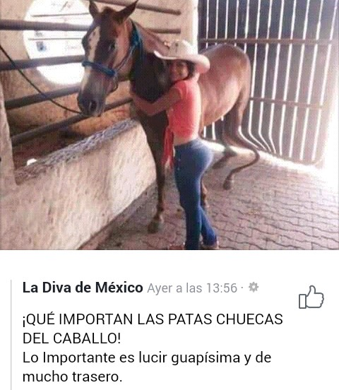 Marcianadas 380 170519001155 (286)