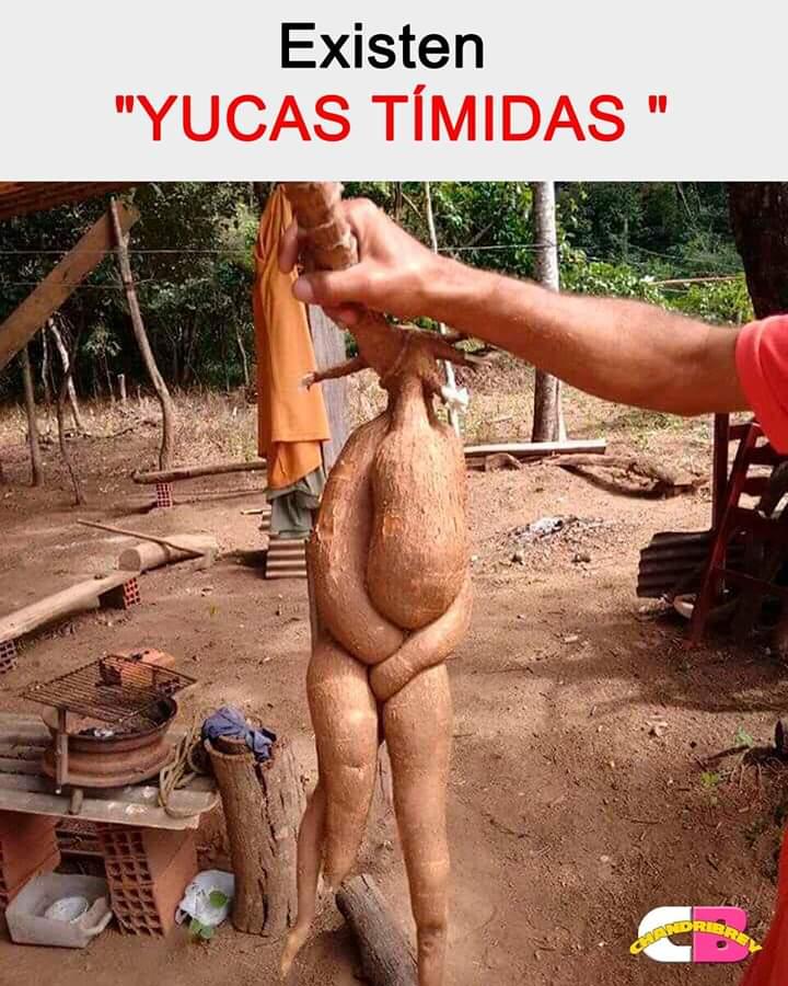 Marcianadas 380 170519001155 (29)