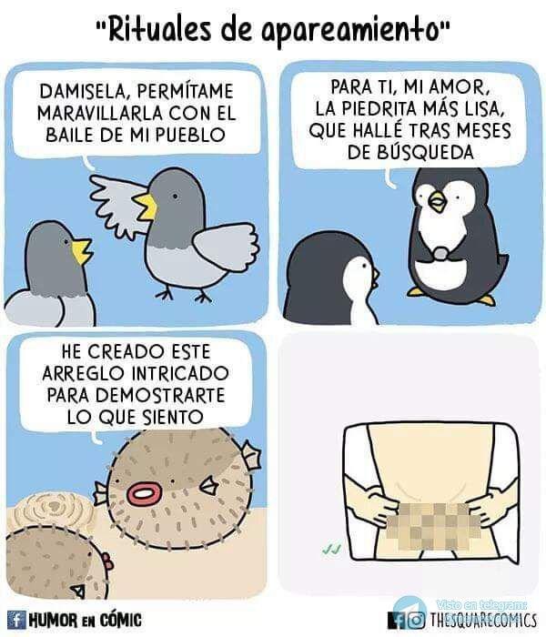 Marcianadas 380 170519001155 (75)