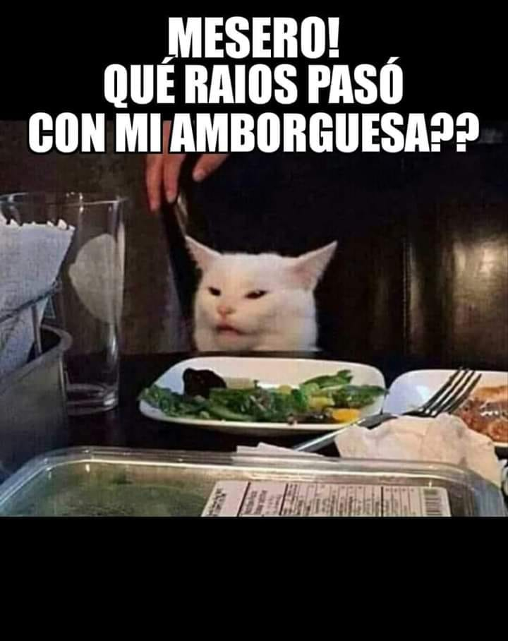 Marcianadas 381 240519001443 (14)