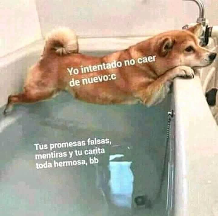 Marcianadas 381 240519001443 (163)