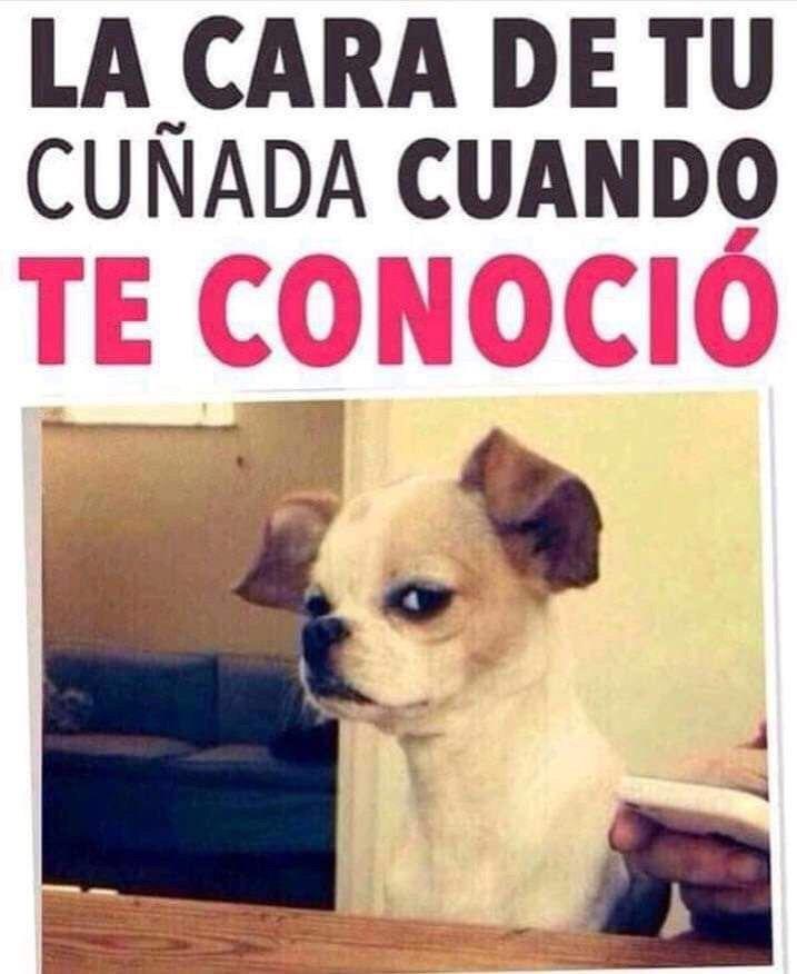 Marcianadas 381 240519001443 (196)