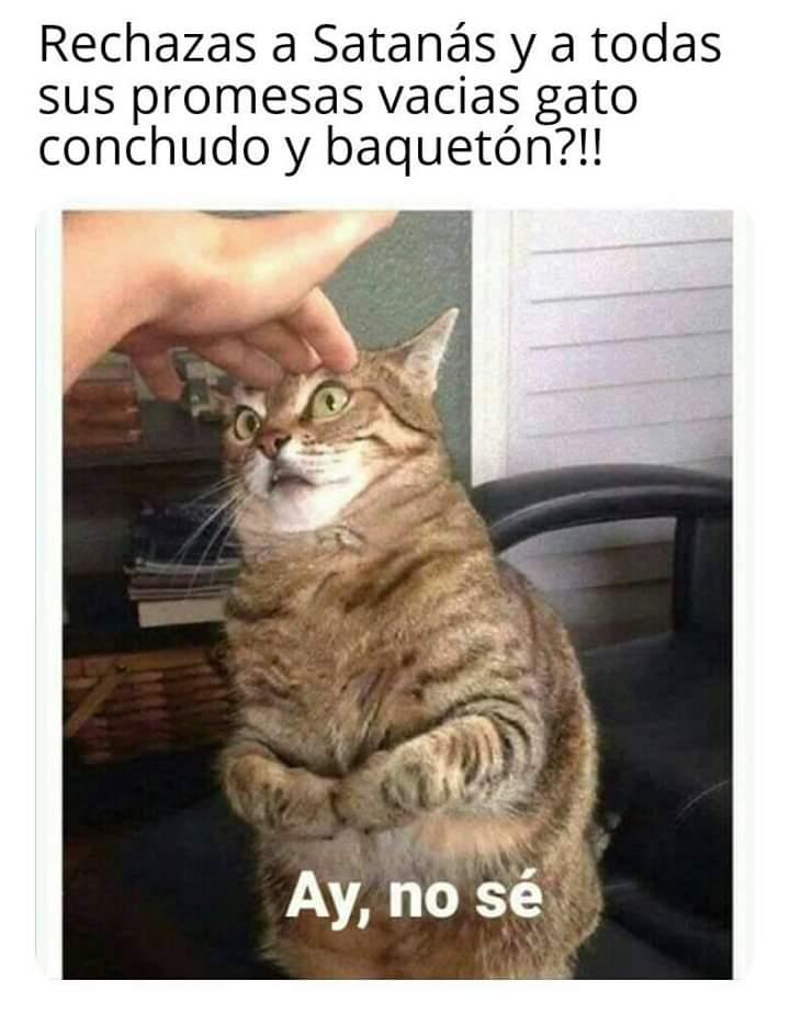 Marcianadas 381 240519001443 (201)