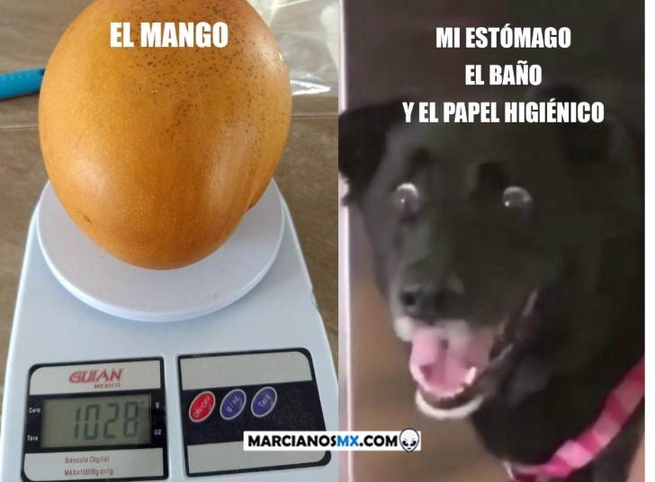 Marcianadas 381 240519001443 (219)
