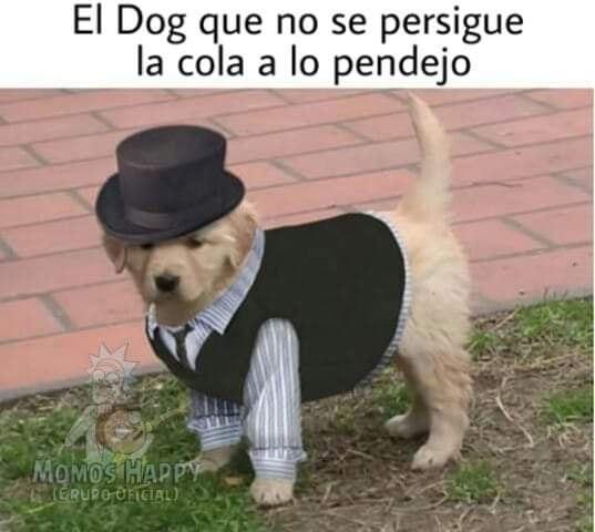 Marcianadas 381 240519001443 (97)