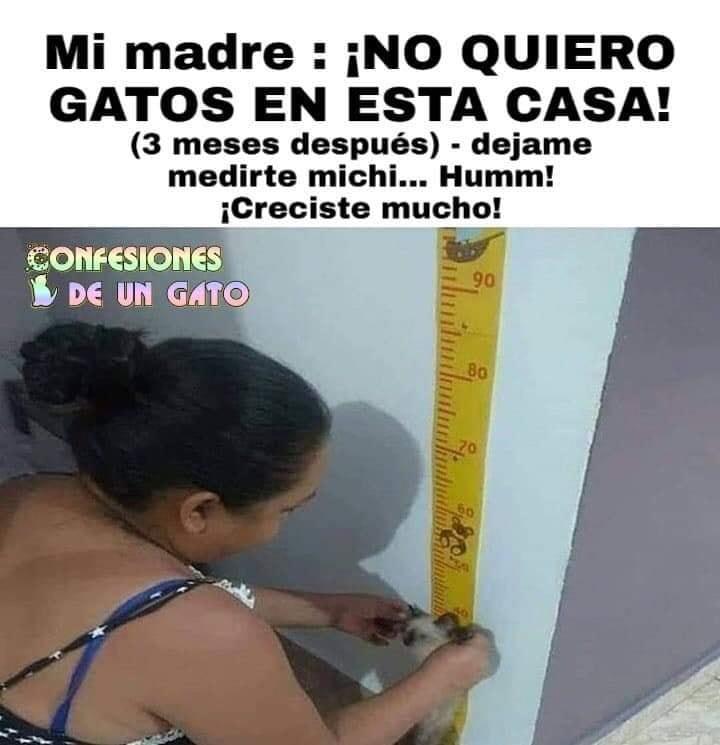 Marcianadas 382 310519001838 (36)