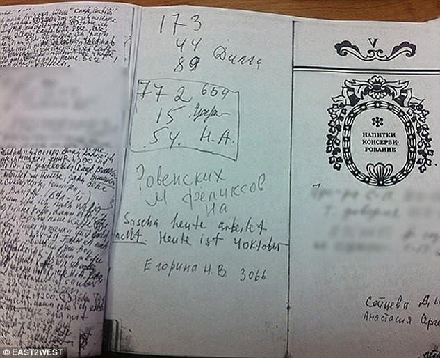 diario de Samsonova