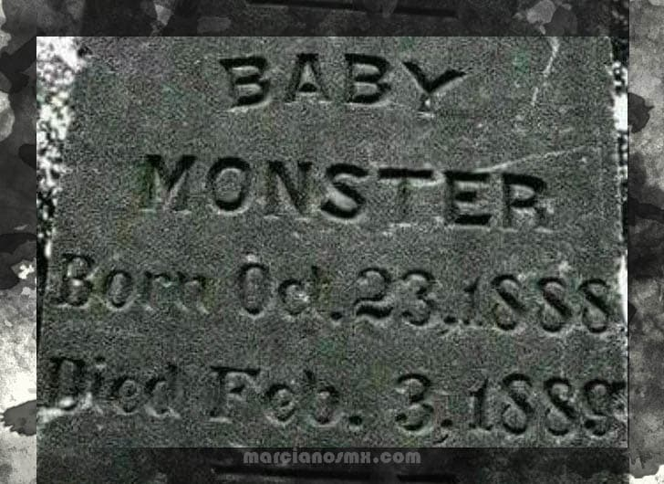 lapida baby monster