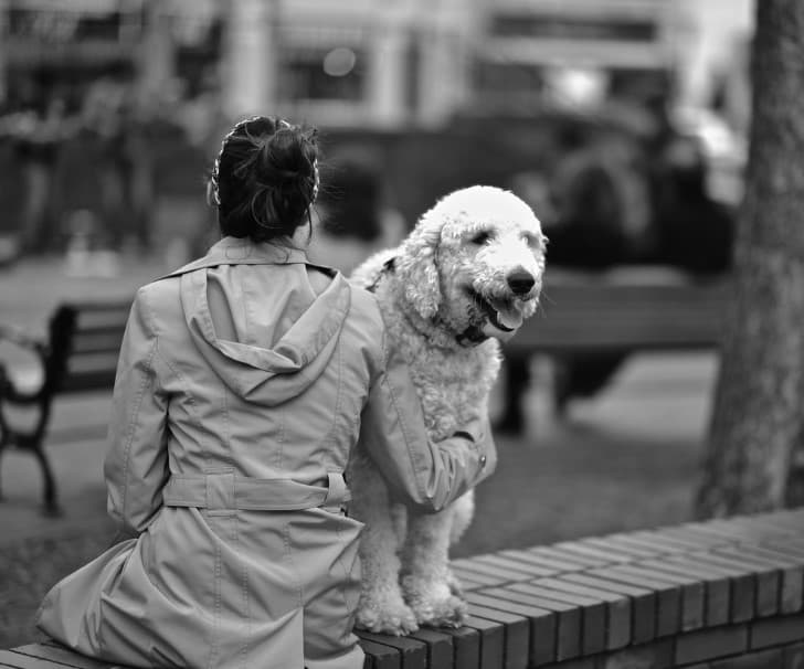 mujer y su perro