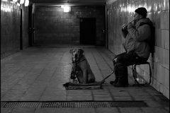perro y su dueño estacion del metro