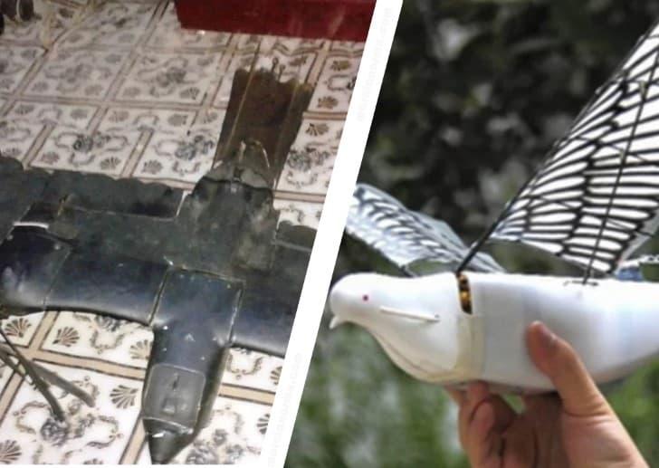 Drones biomiméticos