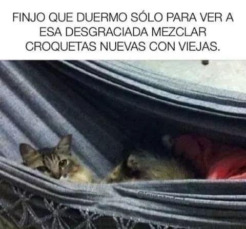 Marcianadas 383 070619001426 (103)