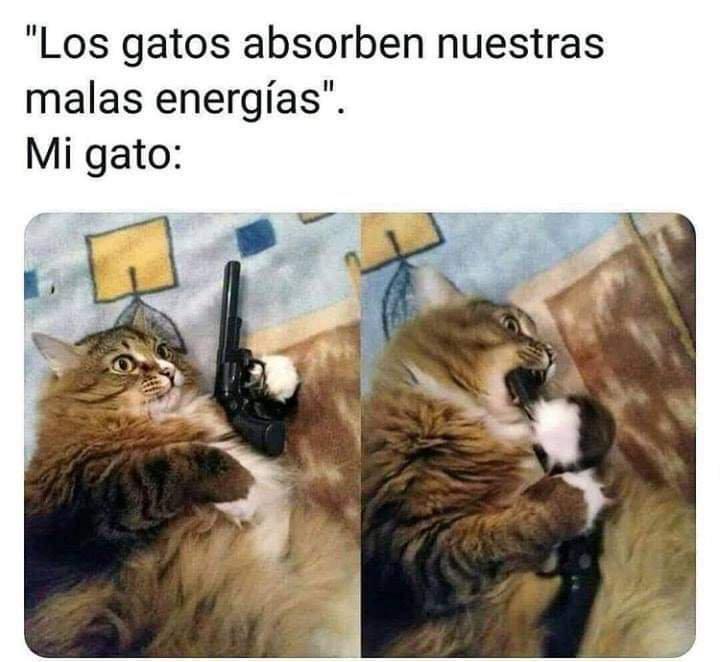 Marcianadas 383 070619001426 (17)