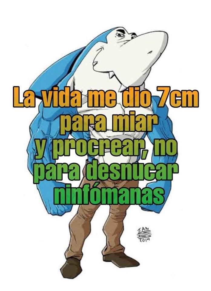 Marcianadas 384 140619001447 (111)