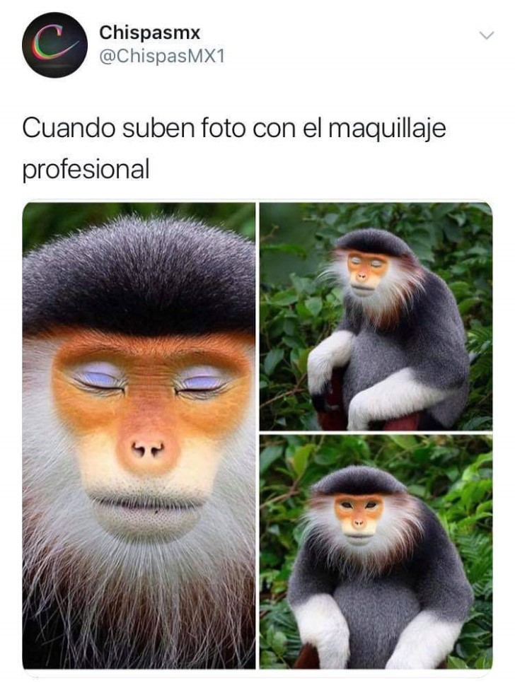 Marcianadas 384 140619001447 (271)