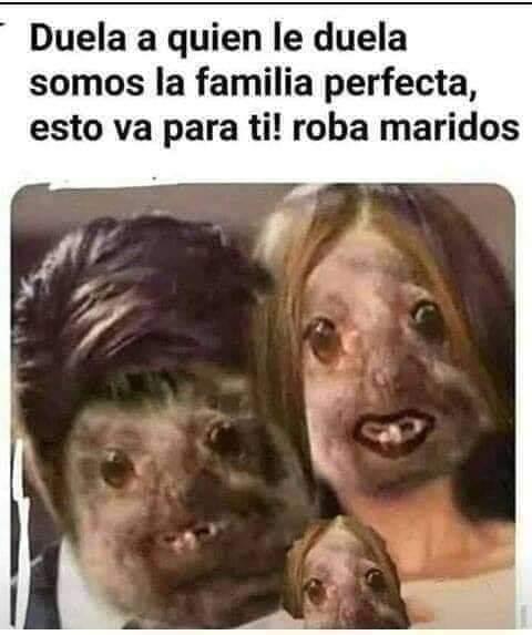 Marcianadas 384 140619001447 (281)