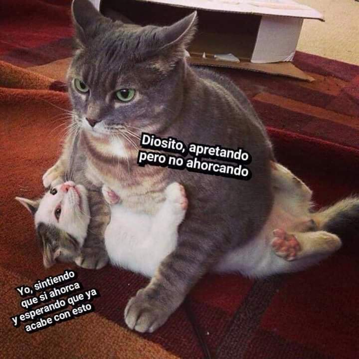 Marcianadas 385 2106191246 (199)