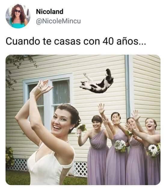 Marcianadas 385 2106191246 (64)
