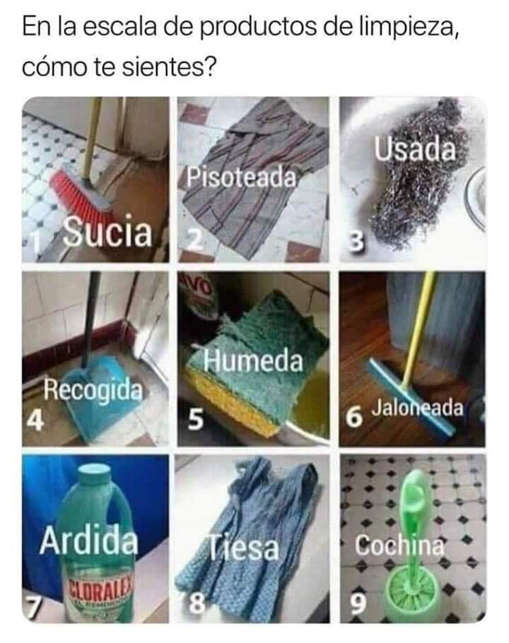 Marcianadas 386 2806201924578652145 (338)