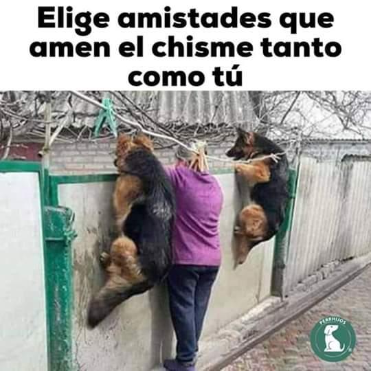 Marcianadas 386 2806201924578652145 (341)
