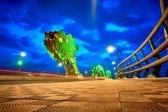 da nang puente iluminado de verde
