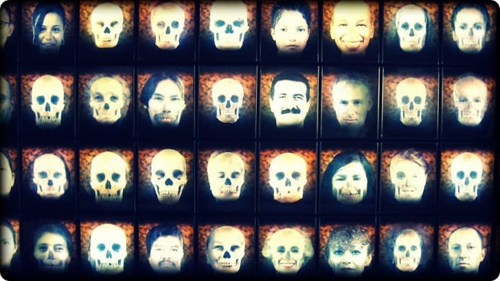 mosaico de la diversidad humana