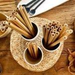 Cadena de restaurantes sustituirá popotes plásticos por unos de bambú