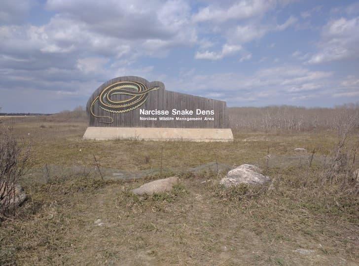 parque de las serpientes en Narcisse