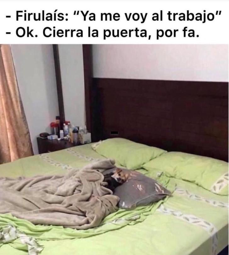 Marcianadas 387 050719001304 (101)