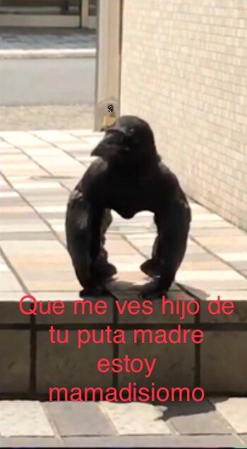 Marcianadas 387 050719001304 (105)