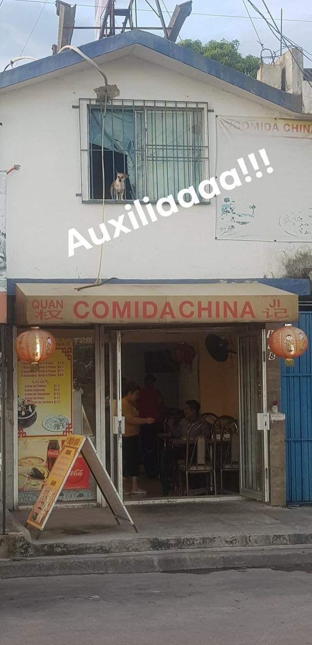 Marcianadas 387 050719001304 (117)