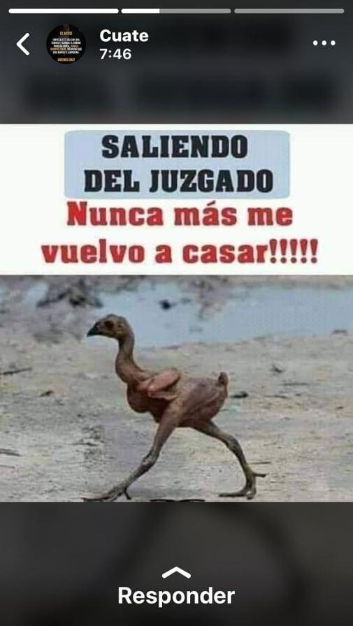 Marcianadas 387 050719001304 (16)
