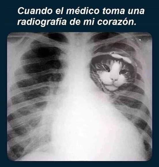 Marcianadas 387 050719001304 (76)