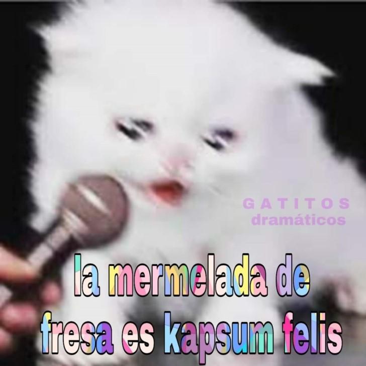 Marcianadas 388 120719001417 (232)
