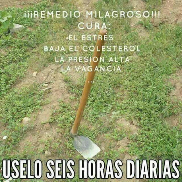 Marcianadas 388 120719001417 (8)