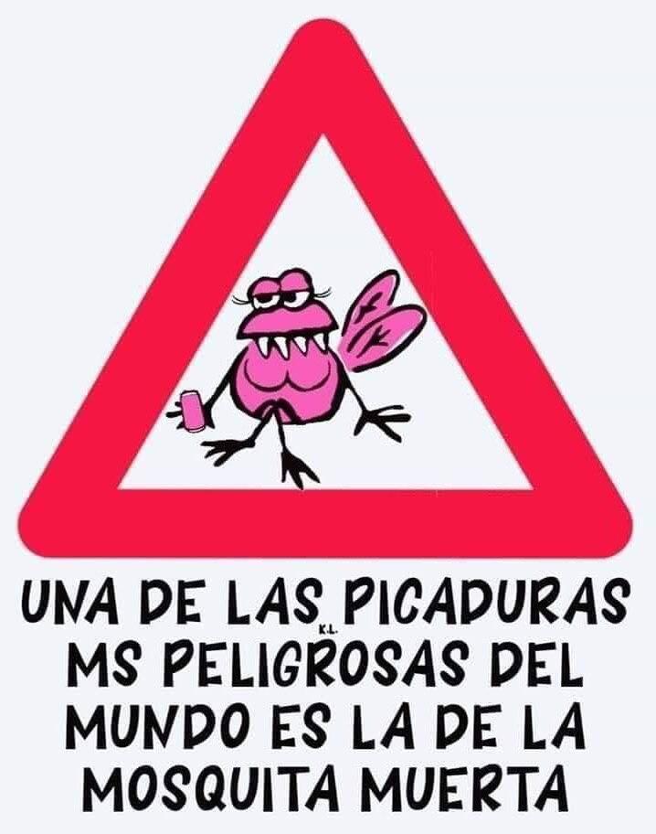 Marcianadas 389 190719121200 (166)