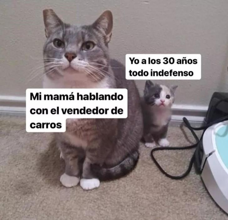 Marcianadas 390 26072019001434 (141)