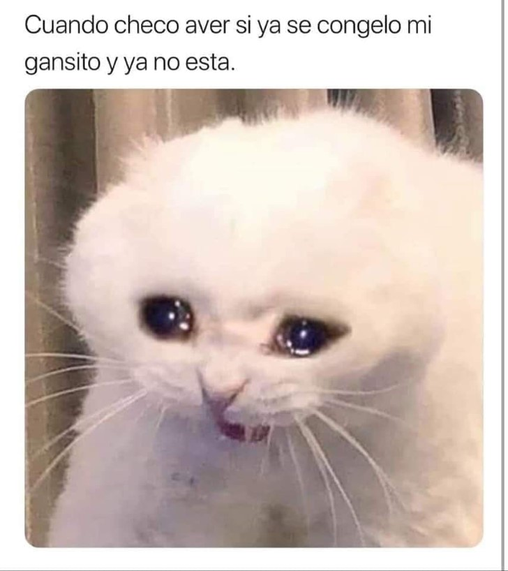 Marcianadas 390 26072019001434 (194)