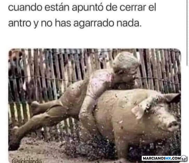 Marcianadas 390 26072019001434 (21)
