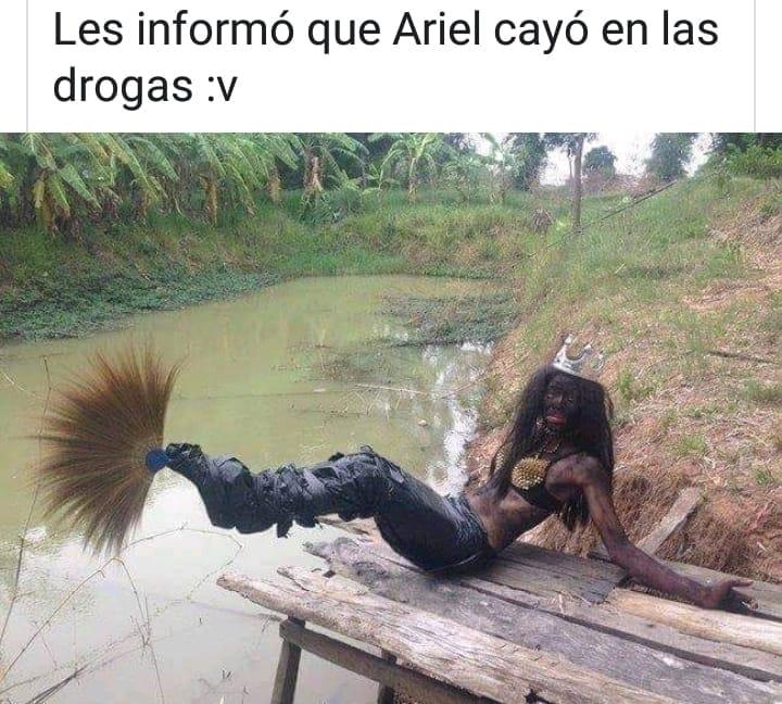 Marcianadas 390 26072019001434 (287)