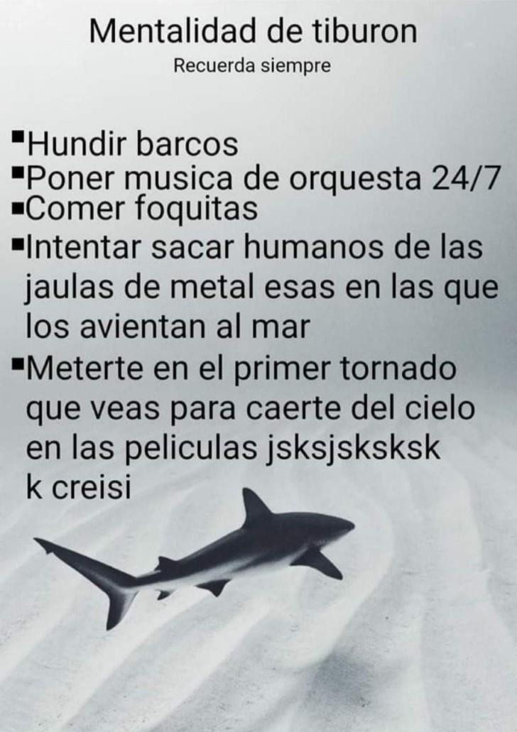 Marcianadas 390 26072019001434 (37)