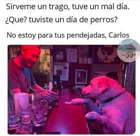 Marcianadas 390 26072019001434 (76)