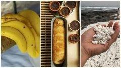 ¿Tienes hambre? Aquí tienes 24 cosas que parecen comida