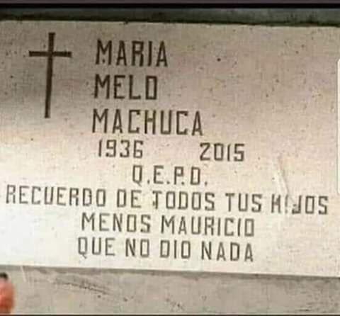 Marcianadas 391 020819001205 (167)