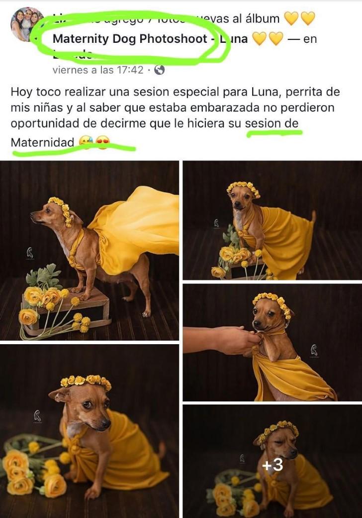 Marcianadas 391 020819002242 (7)
