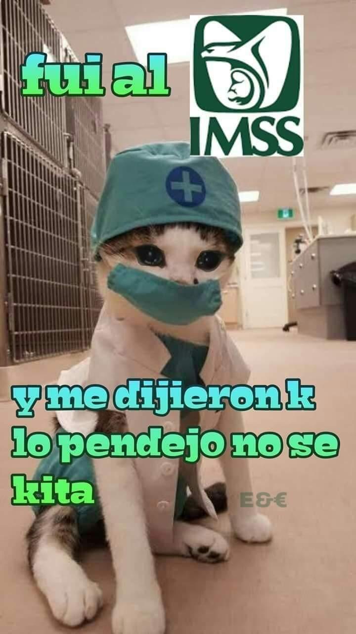 Marcianadas 392 09082019001104 (106)