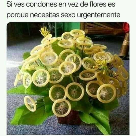 Marcianadas 392 09082019001104 (221)