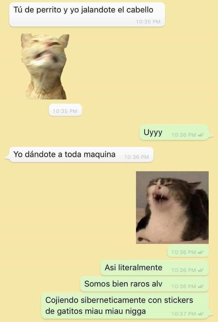 Marcianadas 392 09082019001104 (88)